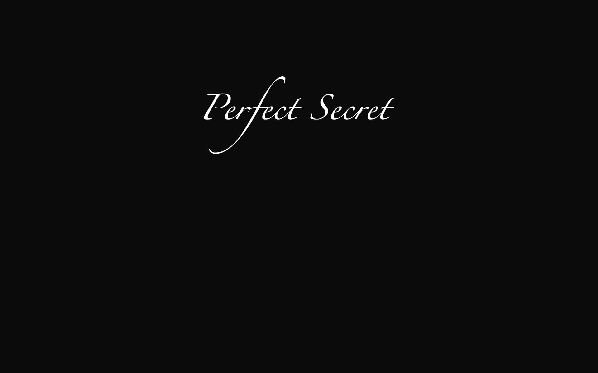 Perfectsecret cover
